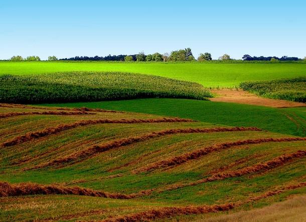 Iowa Clayton County