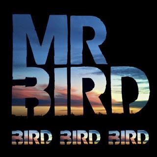 Mr Bird - Cenora Com Noz (Savages Y Suefo Remix)
