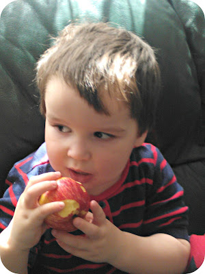 Small boy eating a Royal Gala Apple