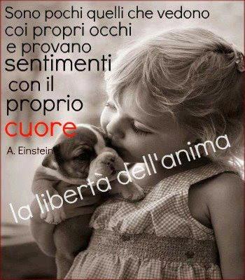 1 black anna amore - 5 4