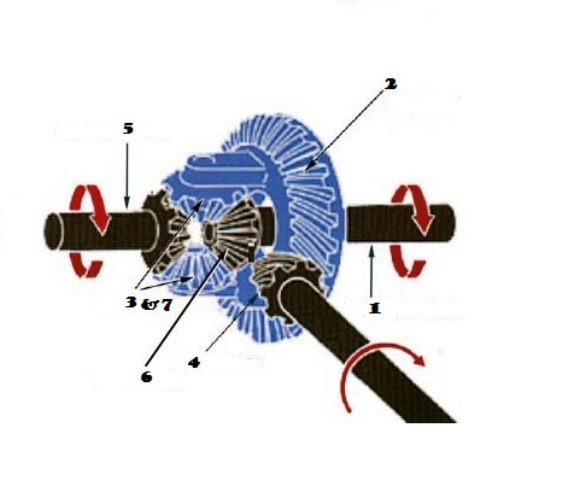 Update  The differential gears detailingDifferential Gear Diagram