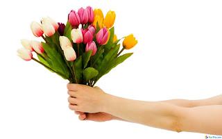 كلمة منك ....... Wallcate.com+-+Full+HD+Flowers+Wallpaper+%252810%2529