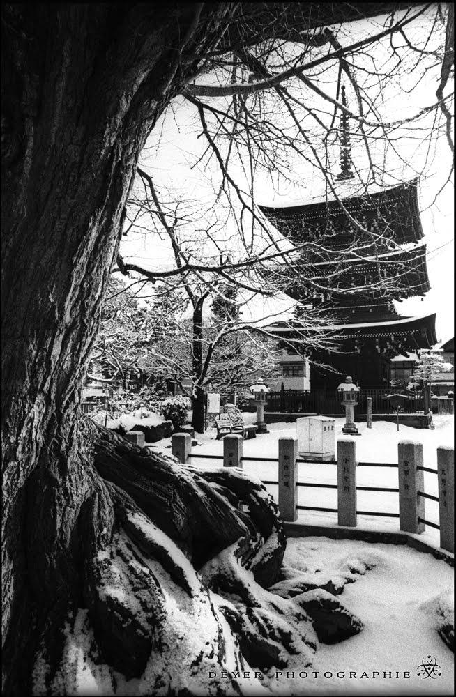 deyerzland photographie noir et blanc du japon 2004. Black Bedroom Furniture Sets. Home Design Ideas