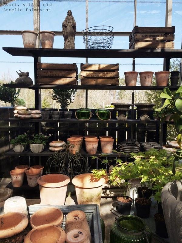 träslövsv trädgård, lördagstips, tips varberg, utflyktsmål, halland, varberg, trädgård, inspirerande butik, inspiration, krukor, blommor, växter, träd,