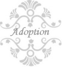 Read Our Adoption Story