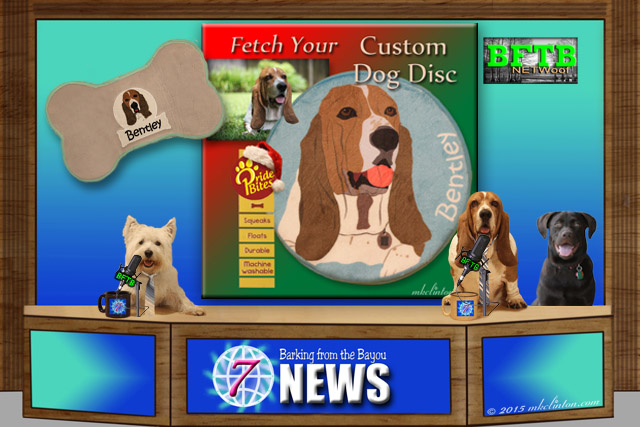 BFTB news desk with three dogs and PrideBites backdrop