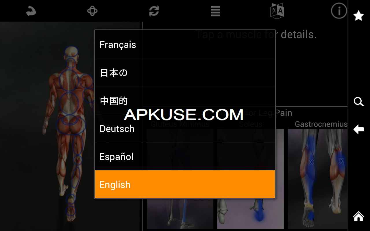 Muscle Trigger Point Anatomy v2.3.0 - globalapk