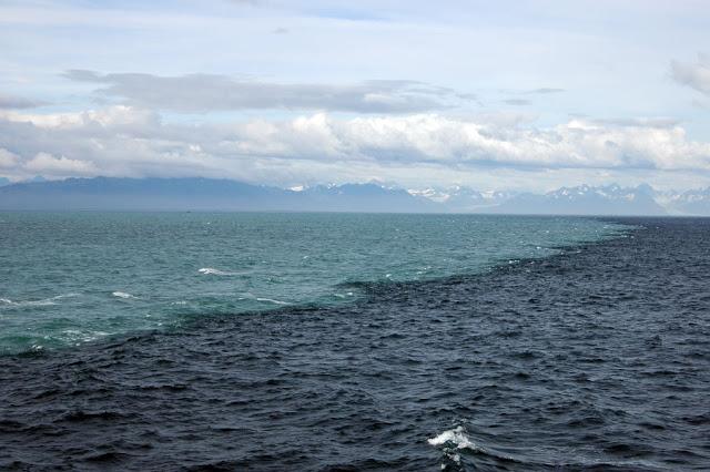 alaska+wto+ocean+mix.jpeg