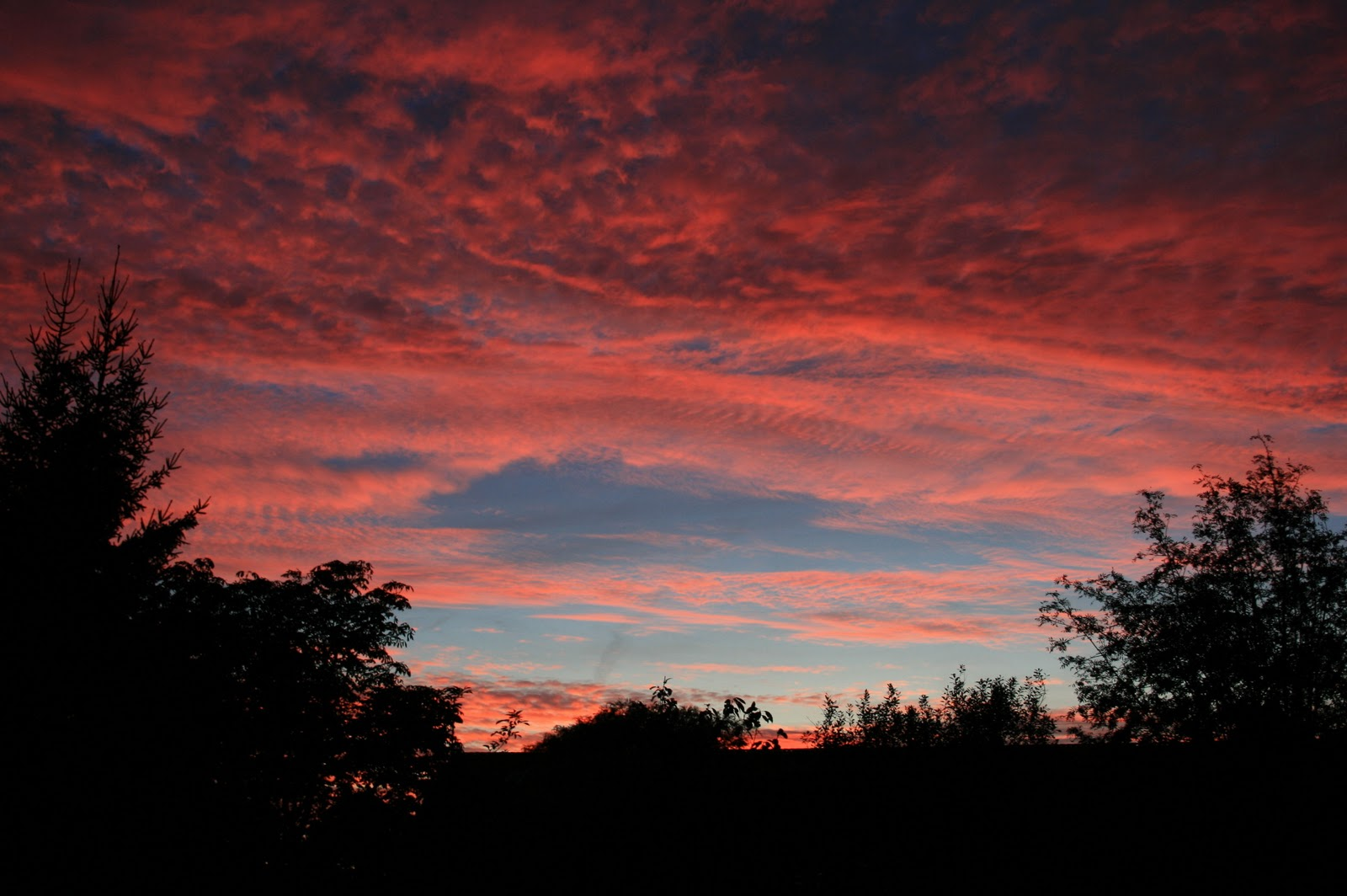 lyserød himmel