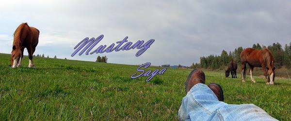 Mustang Saga