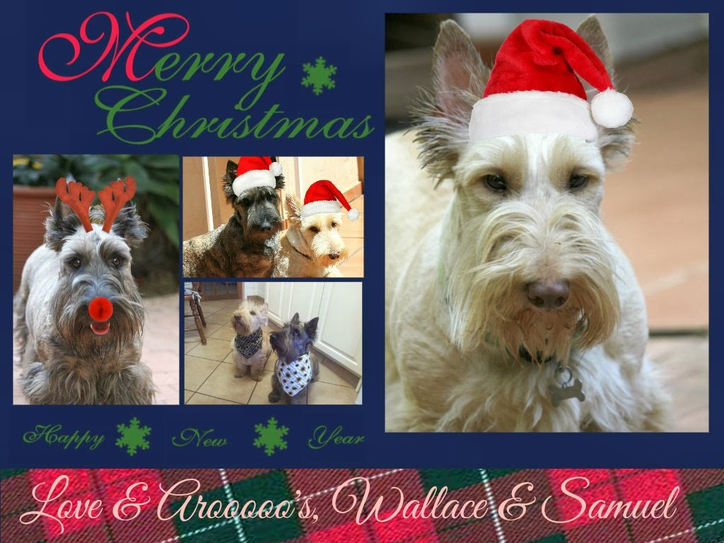 xmas card from wallace&Samuel