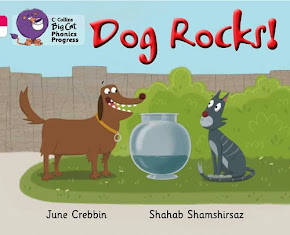 Dog Rocks!
