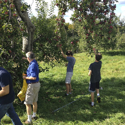 people apple picking: simple living and eating