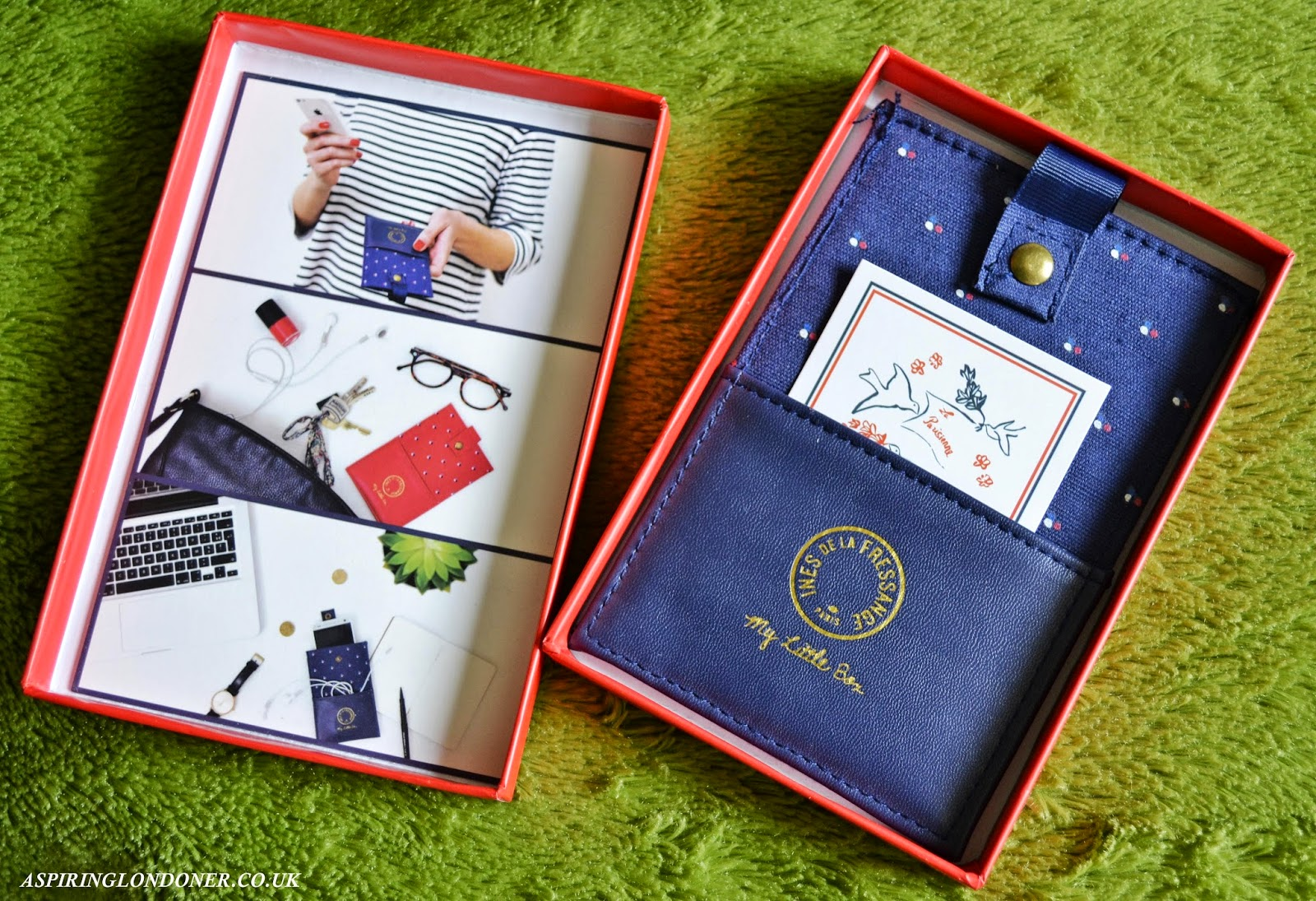 My Little Frenchie Box February 2015 Phone Case Review - Aspiring Londoner