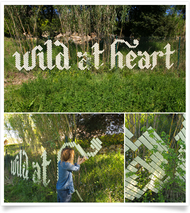 Anna Garforth wild at heart
