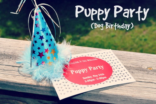 party hat and invite