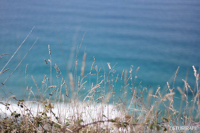 Día Mundial de los Océanos Costa da Vela Cangas