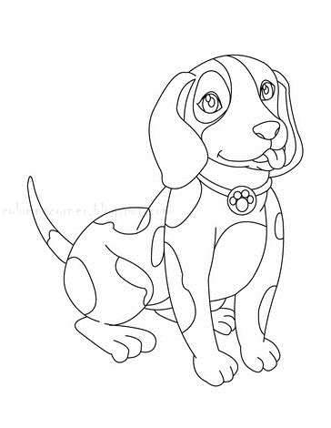 coloriage chiot beagle assis