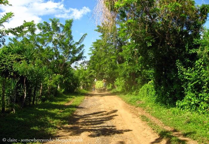 following a truck laden with bananas - Isla de Ometepe - Nicaragua 2009