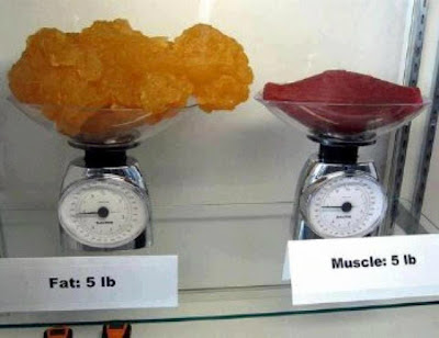 نفس الوزن لا يعني نفس الحجم