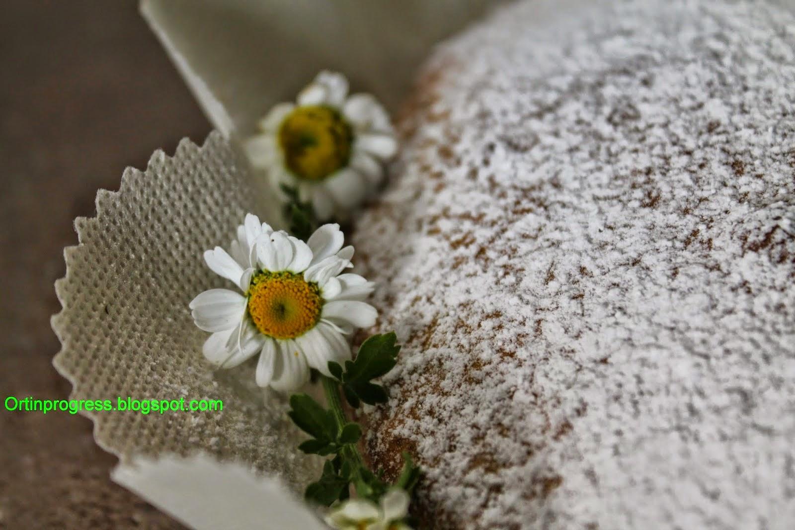 Clicca l'immagine per Ricette con l'erba madre