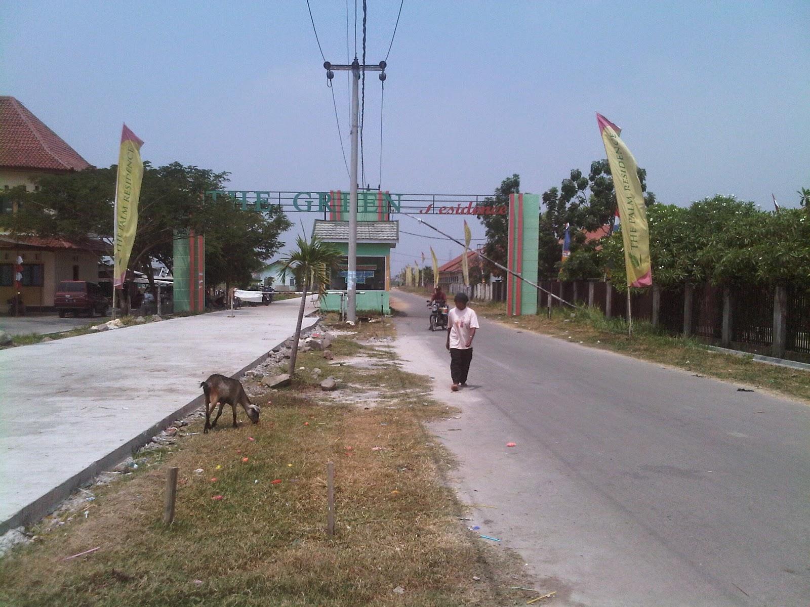 The Palm Residence Perumahan Murah Di Jantung Kota Tambun Utara Bekasi