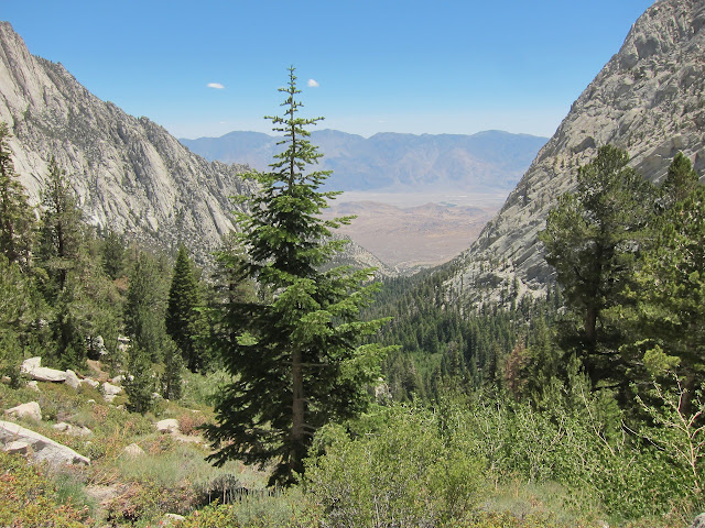 View of White Mountains from Mount Whitney Trail