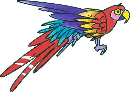 Parrot Cartoon Pictures Parrot Bird Cartoon