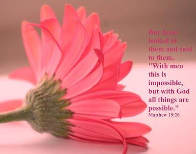 Matthew 19:26 Bible Verse