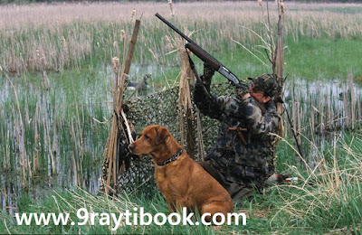 Les arguments de la chasse