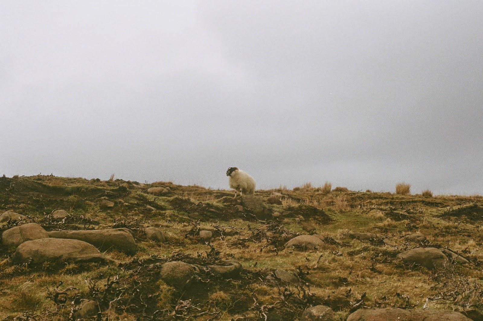 Isle of Skye scenery Scottish Highlands