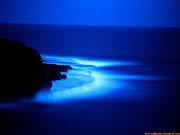 La mente humana, es como un océano, a veces tranquilo, a veces bravo. . (playa azul en el anochecer)