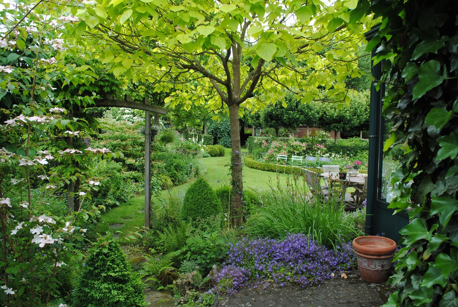 La passion d 39 anne marie mes arbres pour mon petit jardin for Jardin de the