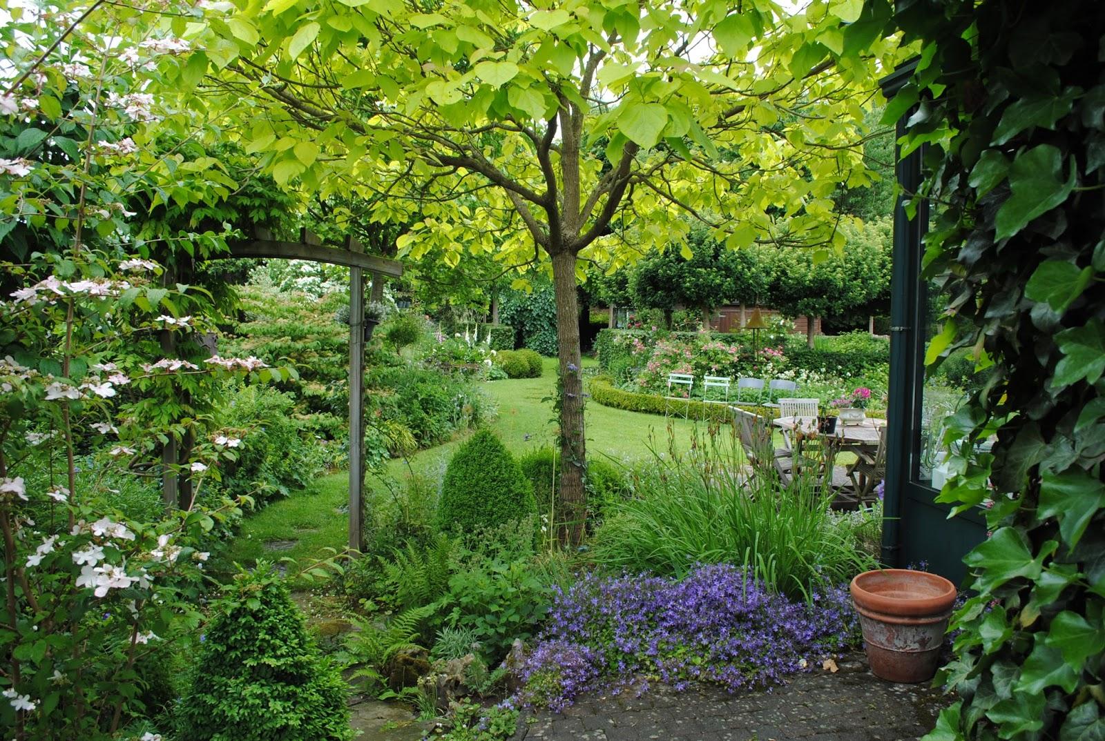 Arbre petit jardin arbre petit jardin une grosse souche for Arbre exterieur jardin