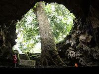 Gua Rancang Kencono yang Bermahkotakan Pohon Klumpit