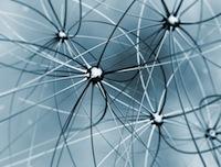 La web semántica, una web de documentos importante para la empresa