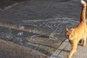 Efeito de foto com giz e o gato de gengibre