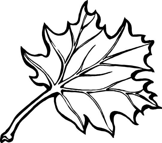 Autumn Coloring Pages Autumn Crafts Picture