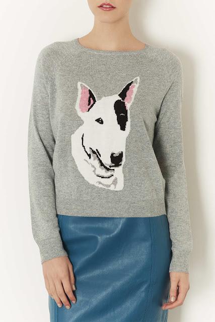 bull terrier jumper