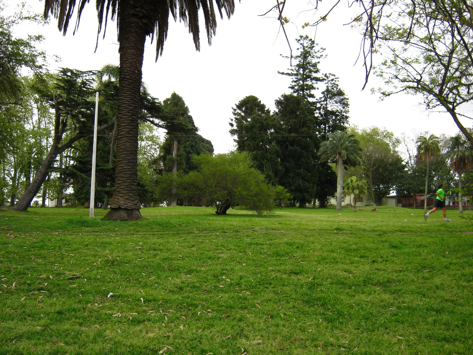 Fotos Uruguay  Prado
