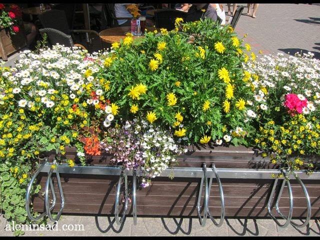 кашпо, контейнеры, ящики, для цветов, сочетание, растений, цветов, уличные кашпо, садовые, клумбы, растения для контейнеров