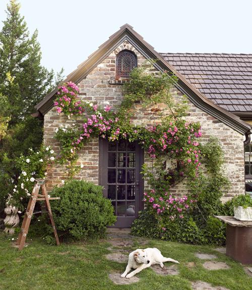 Xardinnova jardines con encanto for Outer look of house