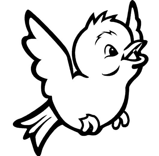 Animales que vuelan para dibujar - Imagui