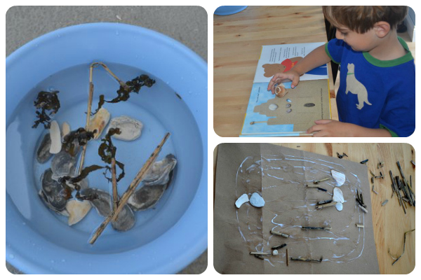 Seashell Activities: ideas for playing and learning with your seashell collection