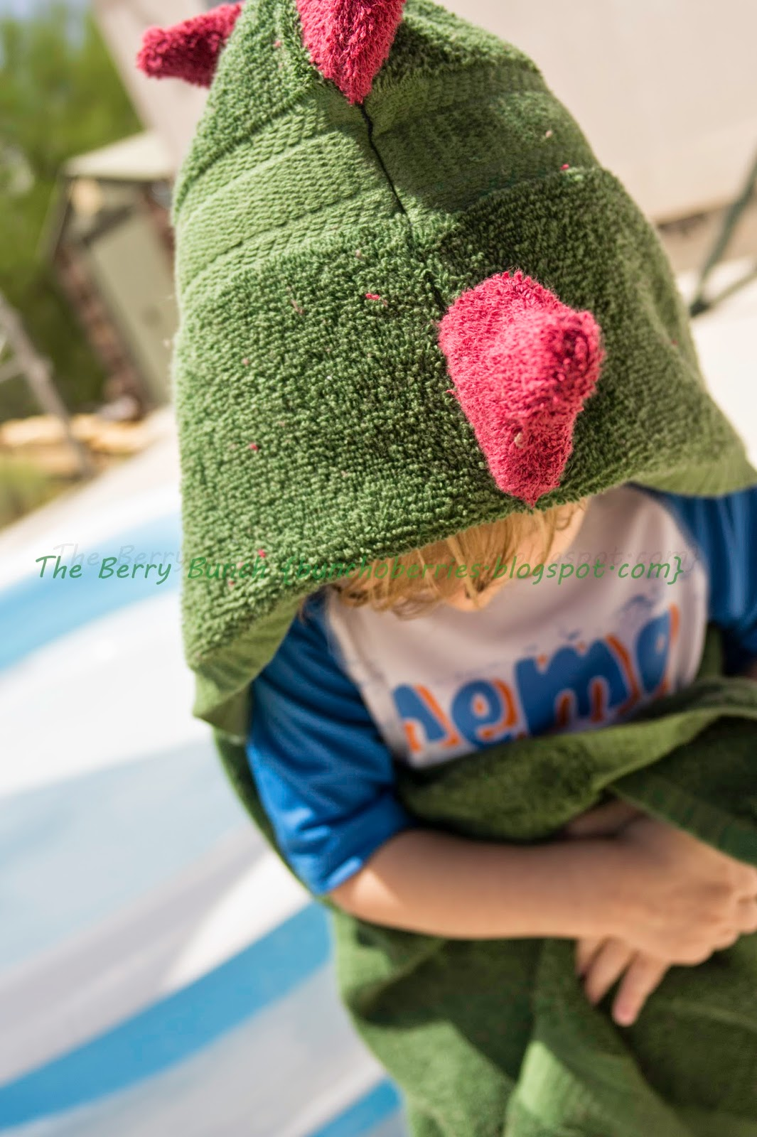 The Berry Bunch: August Mystery Challenge: Cover Up: Dinosaur Hooded Towel