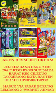 paket usaha agen ice cream, mr cool,fruties,capinos,toka-toka,doremi,camelo