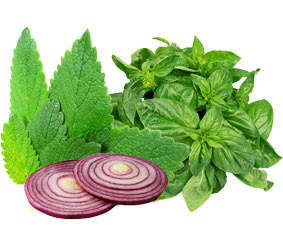 kelebihan obat herbal