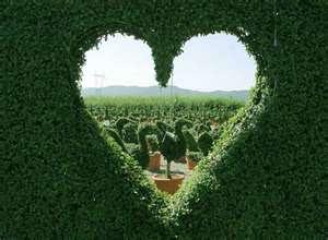 i love love!!