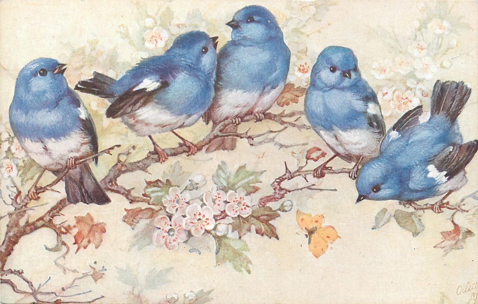 Декупаж птицы