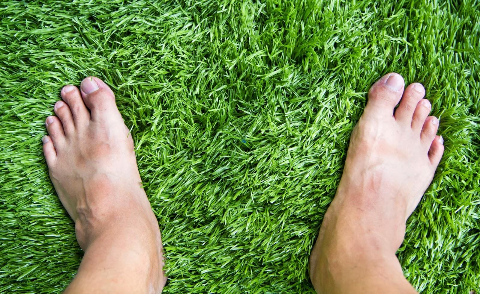 התקנת דשא סינטטי בקלות
